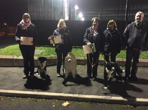 Kennel Club Good Citizen Awards