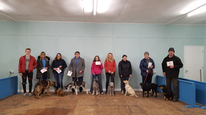 Kennel Club Good Citizen Scheme